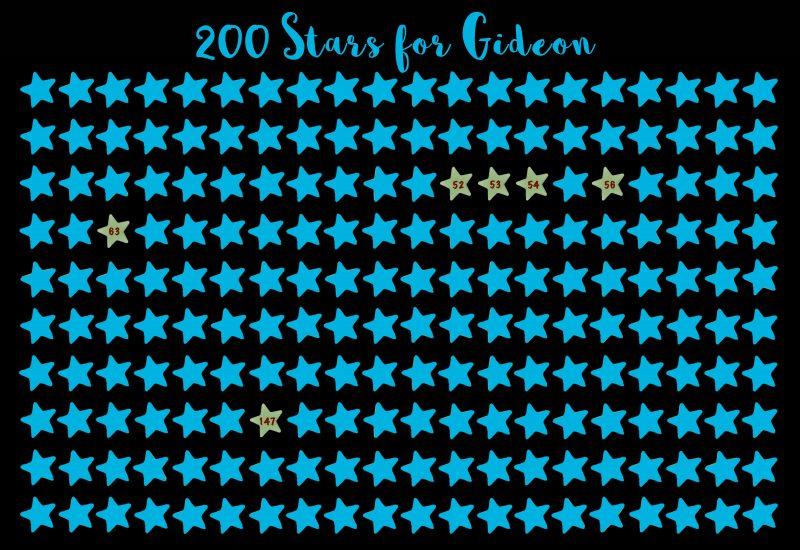 200 Stars Project FINAL